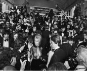 Bobbie Bresee (horror film star) arrives at the Cannes Film Festival, 1979 from six film com